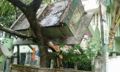 [네팔 대지진 현장] 넘어진 구조물